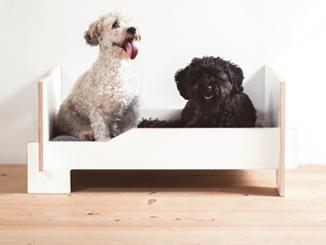 Hundebett Kläffer